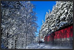 "Winter Forest Experience ("" Wiener Schule "") Tags: öbb oebb obb austria semmering semmeringbahn ghega eisenbahn railway railroad"