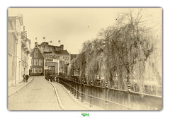 GENT (régisa) Tags: belgique belgië gent gand canal saulepleureur weepingwillow street rue pavée kanaal