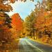 Autumn Splendor in the Appalachians