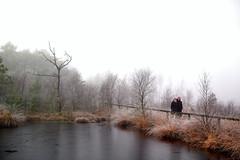 .... (.rog3r1) Tags: sonntagsspaziergang pietzmoor leicasl niedersachen lowersaxony germany deutschland wasser nebel water mood moor vario elmarit