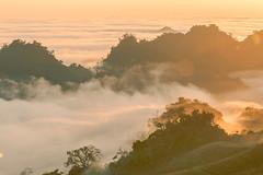_MG_6233.0212.Tân Lập.Mộc Châu.Sơn La (hoanglongphoto) Tags: asia asian vietnam northvietnam northernvietnam northwestvietnam landscape scenery vietnamlandscape vietnamscenery mocchaulandscape nature naturelandscape sunrise clouds mountain flanksmountain vietnammountainouslandscape cloudsofmocchau canon canoneos5dmarkii canonef100400mmf4556lisusm tâybắc sơnla mộcchâu tânlập thiênnhiên thiênnhiênmộcchâu natureinmocchau bìnhminh bìnhminhmôcchâu mây mâymộcchâu núi sườnnúi phongcảnhvùngnúi topmountain dãynúi đỉnhnúi mâyluồnmộcchâu phongcảnhthiênnhiên thiênnhiênviệtnam hoanglongphoto