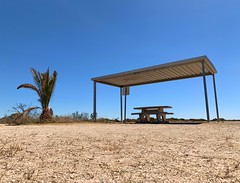 Port Wakefield SA [EXPLORED] (phunnyfotos) Tags: phunnyfotos australia southaustralia sa portwakefield picnic picnicshelter picnictable facilities structure shade palm palmtree shadestructure hot hotweather drought architecture iphone bluesky countrytown building park roadside wayside