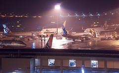 エアバス A320-200 Airbus A320-200 (ELCAN KE-7A) Tags: 日本 japan 千葉 china 成田 narita 国際 international 空港 airport エアバス airbus a320 飛行機 航空機 airplane 第3ターミナル terminal ペンタックス pentax k3ⅱ 2019