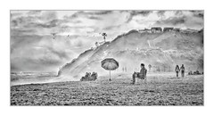 January Beach Day (Christina's World :) Tags: 0452 beach people man male couple walking umbrella palmtrees sandiego scenic sky sea seascape sand beachhouse pontobeach carlsbad california clouds stormy stormclouds youngman youngwoman book manreading mature cliffs hills blackandwhite monochrome monochromeart topaz textures hdr 8293 birds flying portrait candid streetphotography january foggy misty weather fence waves landscape neighborhood