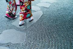 nishiki (N.sino) Tags: leica m9 summilux50mm kamakura houkokuji kimono nishiki 鎌倉 報国寺 着物 お参り