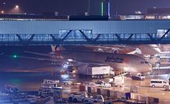ボーイング 787-8 Boeing 787-8 Dreamliner (ELCAN KE-7A) Tags: 日本 japan 千葉 china 成田 narita 国際 international 空港 airport ボーイング boeing b787 787 飛行機 航空機 airplane 第3ターミナル terminal ペンタックス pentax k3ⅱ 2019