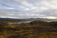 Þingvallavatn lake in the Þingvellir National Park, Iceland  -  (Selected by GETTY IMAGES) (DESPITE STRAIGHT LINES) Tags: nikon24120mmf4 nikon24120mmf4gedvr nikon d850 nikond850 nikkor24120mm nikon24120mm nikongp1 paulwilliams despitestraightlines flickr gettyimages morning getty gettyimagesesp despitestraightlinesatgettyimages iceland þingvallavegur thingvellirnationalpark thingvellirnationalparkiceland þingvellirchurch þingvallakirkja southerniceland ilobsterit þingvallavatn þingvallavatnlake