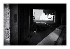 """""""Dans Les Traces Du Poulpe Ou Pour L'Attendrir Faut Taper Dessus.... 17"""" (TBWLC Photography) Tags: fdrouet tbwlc nb bw monochrome street enfant child saintnazaire penhoët nikon d750"""