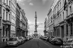 Bruxelles in B&W (01) Colone du congrès (Lцdо\/іс) Tags: brussels belgique belgium belgie europe congres monument lцdоіс 2019 decembre december