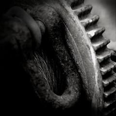 Stillstand - Standstill (Bernd Kretzer) Tags: maschine machine stillstand standstill zahnrad gear minoltamdrokkor50mm114