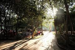 2019, Siem Reap, Cambodia (carythary) Tags: cambodia wat temple neakpean sun sunbeam path sidewalk angkor