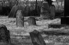 IMG_0893 (Christandl) Tags: friedhof jüdisch