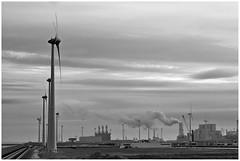 Eemshaven (LeonardoDaQuirm) Tags: eems ems dollart dollard haven hafen port energie energy google datacentre tcn groningen electricity powerplant wind windenergy