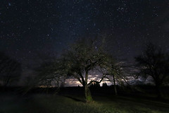 Night tree (JaaniicB) Tags: canon eos 77d wide angle 10mm efs crop sensor night tree stars mood shadows neat 1022mm 1022 long exposure 15 seconds outside countryside f35 astrometrydotnet:id=nova3858627 astrometrydotnet:status=failed