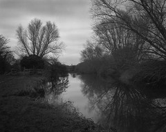 Grantchester Meadows (RoryO'Bryen) Tags: