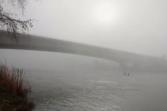 Bridge to nowhere (Marisa Bosqued) Tags: bridge puente river río ebro fog niebla water agua cielo sky sol sun zaragoza españa spain elitegalleryaoi bestcapturesaoi aoi