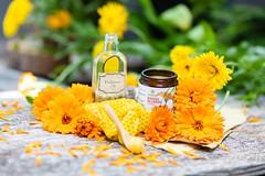_I6A5729 (TobiasW.) Tags: sonnenmoor produkte von kräuter heilkräuter herbals healingherbals healing cremes salben cremen naturprodukte natur