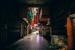 A waiting dog (Scofield Chan) Tags: street streetsnap streetphotography city urban hong kong rico ricoh leica m240 28mm elmarit28mm dog shadow