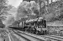46100. 'Royal Scot' at the NYMR. (Alan Burkwood) Tags: nymr lms fowler class7p 46100 royalscot steam locomotive silverefexpro2