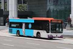 SBS6569M, Raffles Boulevard, Singapore, October 11th 2018 (Southsea_Matt) Tags: sbs6569m route133 sbstransit rafflesboulevard singapore october 2018 autumn canon 80d sigma 1850mm bus omnibus transport vehicle mercedesbenz citaro o530