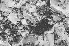 shards. (__J) Tags: ice eis frozen gefroren winter berlin tempelhof tempelhoferfeld scherbe shards sliver eisscholle frozenpuddle gefrorenepfütze sonyalpha7ii sonyalpha7m2 sonyilce7m2 sonyalpha7 sonyalpha samyangaf35mmf28fe samyang35mm28 samyang35mm samyang3528 35mm samyang primelens festbrennweite blackandwhite schwarzweis sw bw monochrome monochrom cold kalt