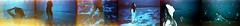 Experiment 4 (Sean Kobi Sandoval) Tags: taoism wu wei tao te ching taoteching laotzu laozi fujicolor c200 swimming swim coldwater cold freezing life euphoria northsea sea seawater lightleaks newartmovement 2020