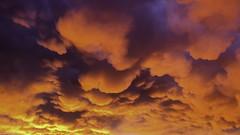 Hometown Sunset (Christian Hoemke) Tags: deutschland germany höhrgrenzhausen rheinlandpfalz rhinelandpalatinate s10 samsung samsunggalaxys10plus sunset westerwald