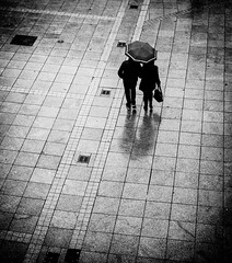 Walk in the rain (matwolf) Tags: street streetphotography walk people rain couple spaziergang stadt town monochrome mono blackandwhite noiretblanc schwarzweis outside