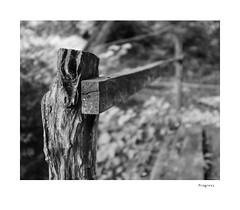 Progress (agianelo) Tags: wood handrail detail post monochrome bw bn blackandwhite