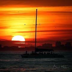First sunset of the decade (Mario Houben | Photography) Tags: mariohoubenphotography keybiscayne sunset florida usa