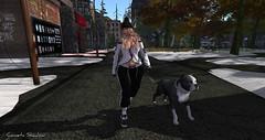 ❤WALK WITH MY PUPPY (cometa shadow blog) Tags: catwa maitreya amarabeauty navycopper leimotiv blueberry dog rezroom walk