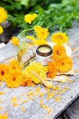 _I6A5707 (TobiasW.) Tags: sonnenmoor produkte von kräuter heilkräuter herbals healingherbals healing cremes salben cremen naturprodukte natur