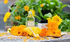 _I6A5699 (TobiasW.) Tags: sonnenmoor produkte von kräuter heilkräuter herbals healingherbals healing cremes salben cremen naturprodukte natur