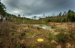 No Aliens Today! (Rob Pitt) Tags: war worlds bbc location delamere forest cheshire