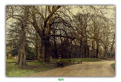 I NEED YOU SO MUCH CLOSER (régisa) Tags: citadel gent gand citadelle chemin path parc citadelpark deathcabforcutie
