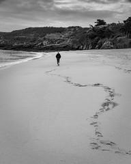 Seule sur le sable... (PhlippeC.) Tags: monochrome noirblanc blackwhite bretagne mer sea beach plage sable traces empreintes