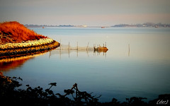 la rete (erman_53fotoclik) Tags: rete pesca riva vista laguna bariera canon eos 500d erman53fotoclik