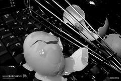 Broken Heart  12 (@jbedrina) Tags: abstract accident art background breakfast broken brokenheart chicken closeup collection computer concept conceptual cookbook cracked crazy creative decor decoración decoration destroyed dirty egg food fresh healthy isolated kitchen liquid nobody object one organic part photoart poster reflection series shape shell skimmer spoon texture yolk bedrina