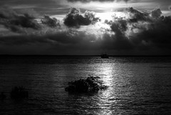 Sunset (Markus Branse) Tags: sunset floodetlameroobeach darwin northernterritory australia lameroo beach floodet meer see sea strand flut high tide überflutung überflutet himmel sky clouds cloudy wetter weer weather meteo australien ausssie australie austral oz ocean lagune mangrove mangroven wasser baum sonnenuntergang boot wolke ozean landschaft