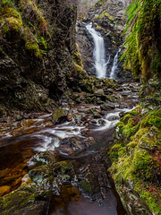 Corrimony Falls (Highlandscape) Tags: iainmacdiarmid ferns landscape winter dreich nature damp handheld outdoor 2020 hill boulders rocks unitedkingdom highland waterfall river highlandscapezenfoliocom flow moss natural highlands water beauty colour trees january scotland cascade ecosse rural countryside highlandscape wet weather olympus gorge em1markii