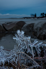 Covered in ice (Mika Lehtinen) Tags: ice rock sea winter january finland cold