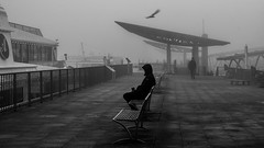 everything stopped / start of a new year (Özgür Gürgey) Tags: 169 2020 50mm bw d750 hamburg landungsbrücken nikon bird fog motion people silhouettes street