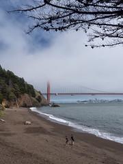 Kirby Cove Beach (tahewitt) Tags: marinheadlands california beach goldengate ocean