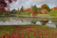 Autumn Leaves (Julian Chilvers) Tags: sheffieldpark landscape reflection gold lake orange colour garden leaves plant tree sussex green yellow uk red