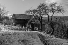 REMOTE PEASANT FARM (LitterART) Tags: kleinbauer bergbauer bauernhof moped puch lindner traktor tractor milchkannen milkcans retro timeless puchds50 steyrpuch steyrdaimlerpuch heuballen steiermark österreich stall stable kuhstall cow