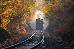 Steaming back on track (Artur Tomaz Photography) Tags: comboio comboioavapor linha vapor vouga steam train old back time track portugal aveiro trees smoke vouguinha