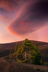 Tree and Cloud (Michael Bollino) Tags: california volcano volcanic soil trees cindercone clouds color sunset lenticular hiking outside nature
