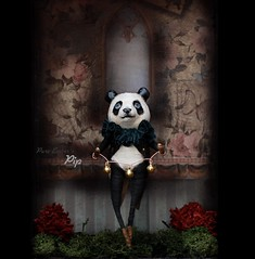 Bells 🐼 (pure_embers) Tags: pure laura embers doll dolls england uk pureembers photography photo art cute whimsical pip panda kayleigh radcliffe portrait artdoll sculpture bells