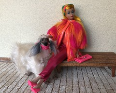 People watching (Foxy Belle) Tags: doll barbie color magic mod pink orange fur francie vintage yellow dog shaggy superstar pet diorama 16 scale city sidewalk walking stroll