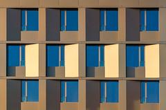 Four in gold (jefvandenhoute) Tags: belgium belgië antwerp nieuwzuid wall windows goldenlight